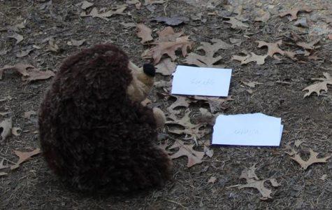 Hedgehogs are predictors too