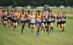 Cross Country Fall Spotlight