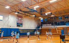 Volleyball Fall Spotlight