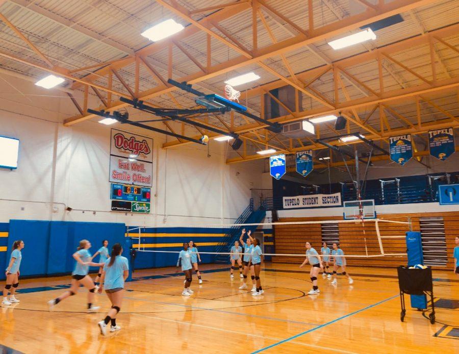 Volleyball Fall Spotlight
